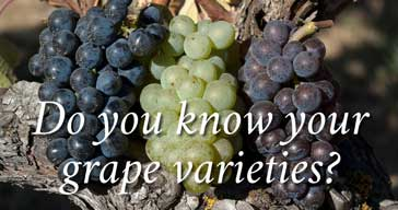 do-you-know-your-grape-varieties