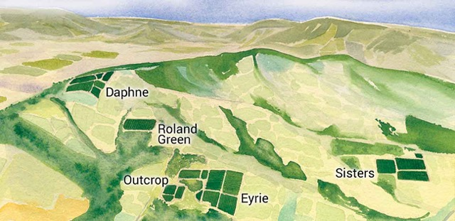 Map-of-The-Eyrie-Vineyards-in-the-Dundee-Hills-Oregon